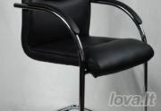 Lankytojų kėdė Sakramento V