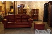 Naudotas odinis baldų komplektas