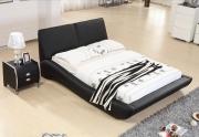 Moderni lova DAN