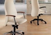 Biuro kėdė B0300