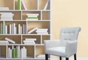 Svetainės kėdė-fotelis